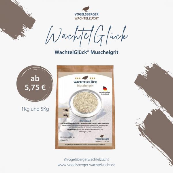 wachtelglueck-muschelgrit