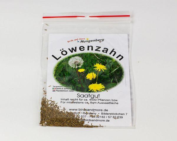 Löwenzahnsamen für Saatgut Wachtelfutter